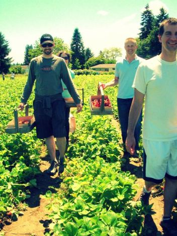 strawberry picking with the gang